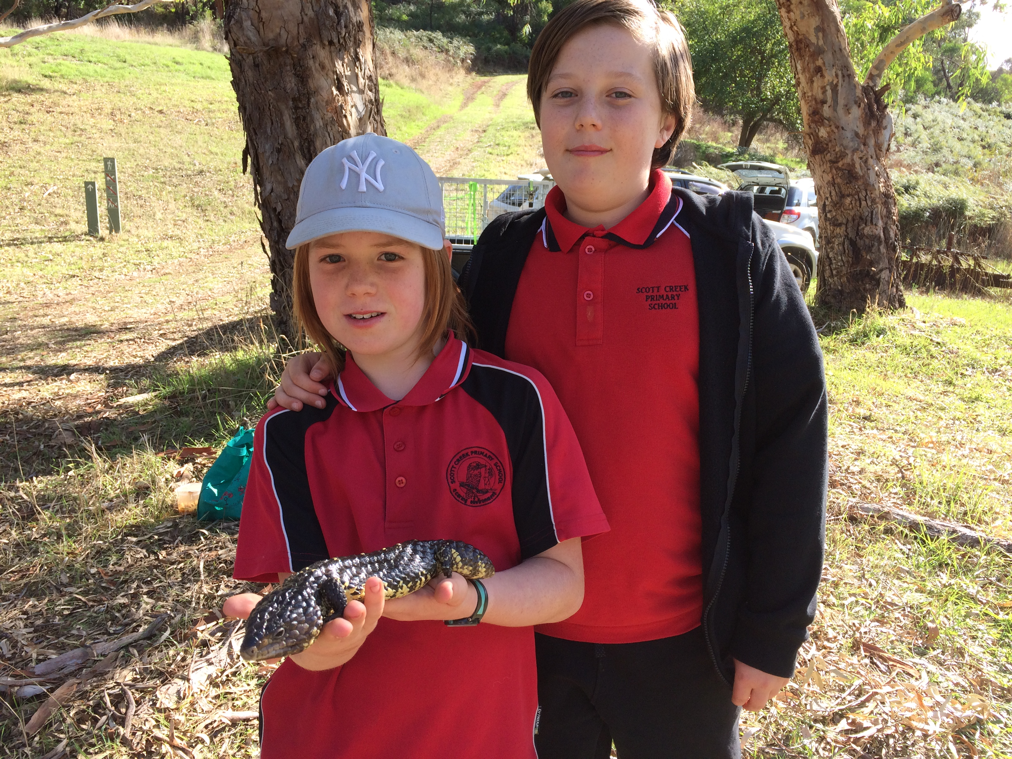 Two students holding a sleepy lizard.